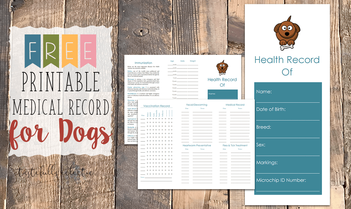 Cat Immunization & Medical Tracker {Free Printable} - Tastefully - Free Printable Pet Health Record