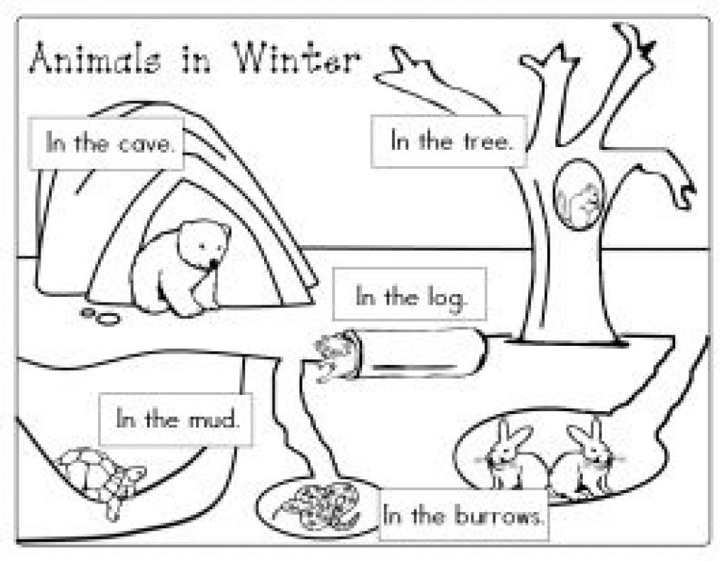 Coloriage Animaux Qui Hibernent : Viens T'amuser Gratuitement Sur - Free Printable Hibernation Worksheets