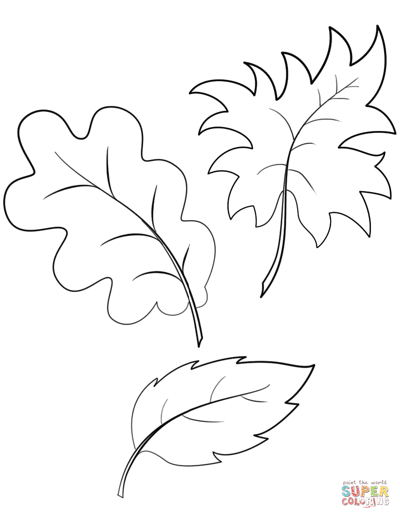 Fall Autumn Leaves Coloring Page | Free Printable Coloring Pages - Free Printable Pictures Of Autumn Leaves