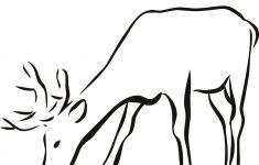 Free Printable Arty Animal Outlines