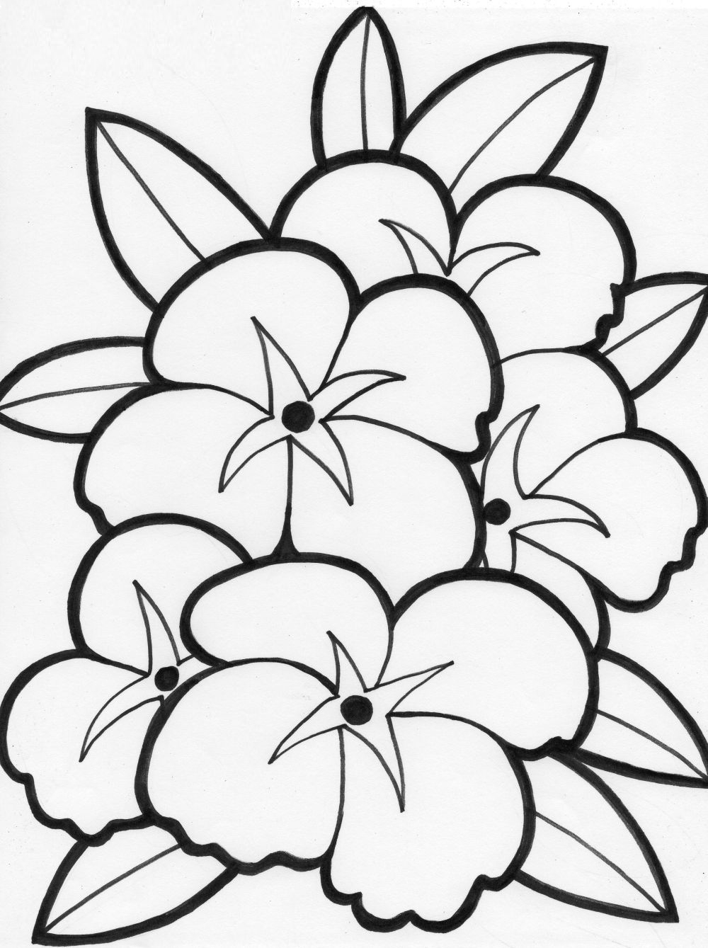 Free Coloring Pages | Free Flower Coloring Pages | Coloring Pages - Free Printable Flower Coloring Pages