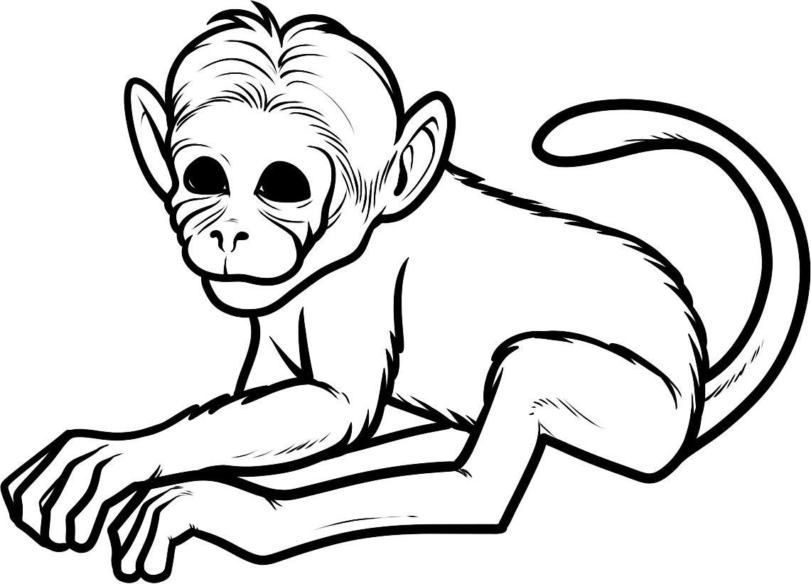 Free Printable Monkey Coloring Pages For Kids - Clip Art Library - Free Printable Monkey Coloring Pages