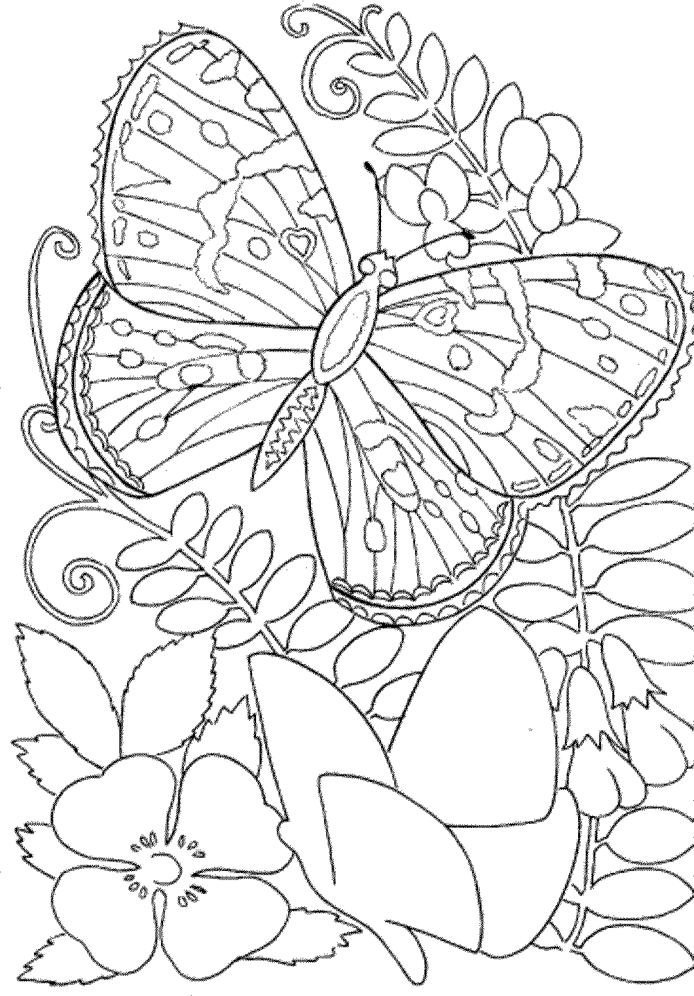 Free Printable Spring Coloring Pages For Adults - Coloring Home - Free Printable Spring Coloring Pages For Adults