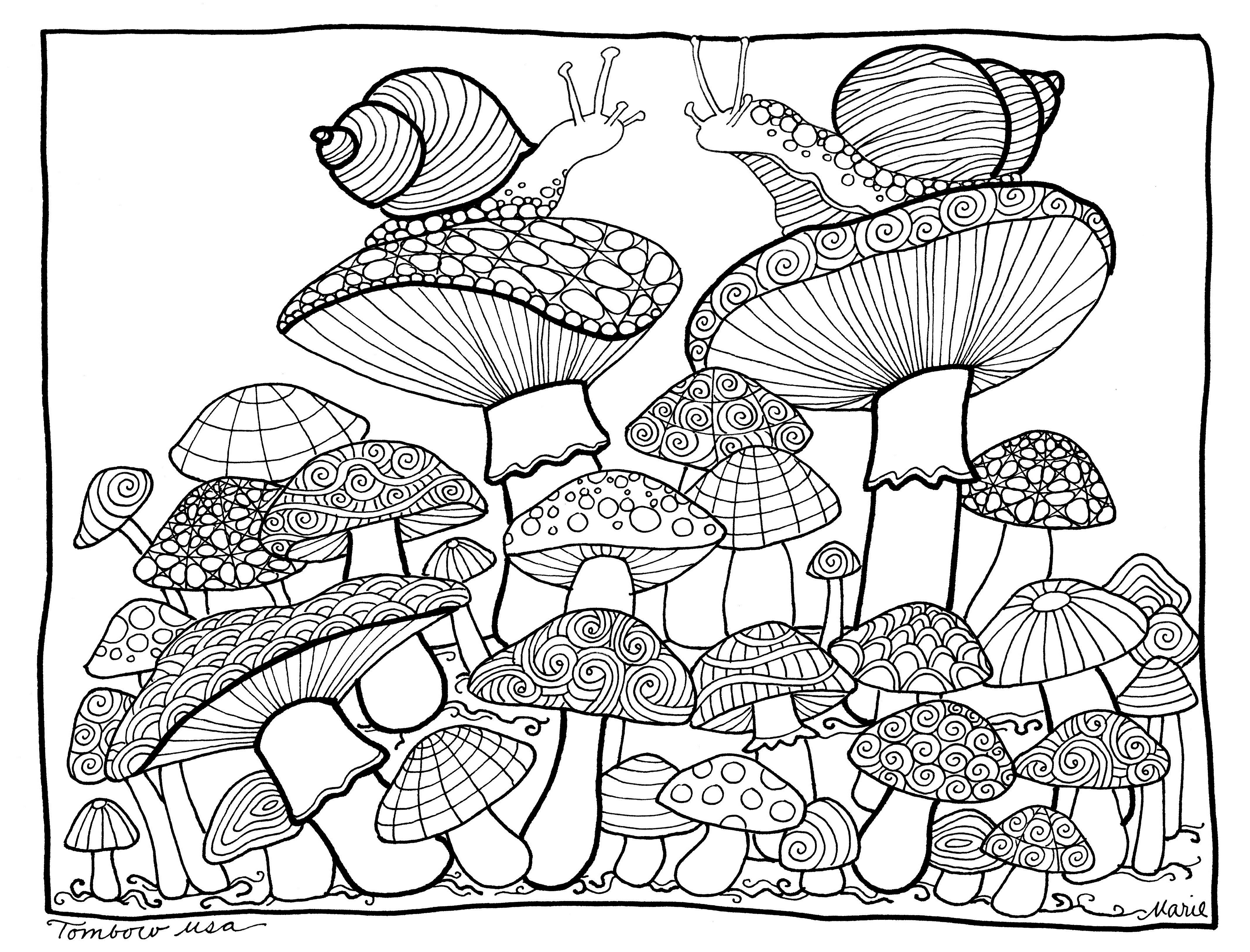 Mushrooms Coloring Pagetombow Usa   Paper   Coloring Pages, Free - Free Printable Mushroom Coloring Pages