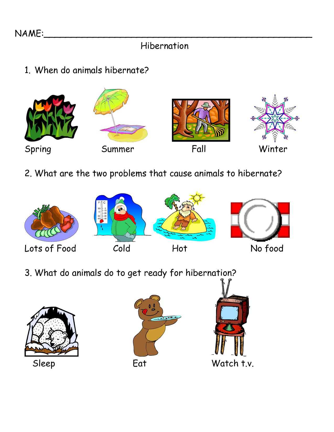 Worksheets On Bear Hibernation - Google Search | Bear Hibernation - Free Printable Hibernation Worksheets