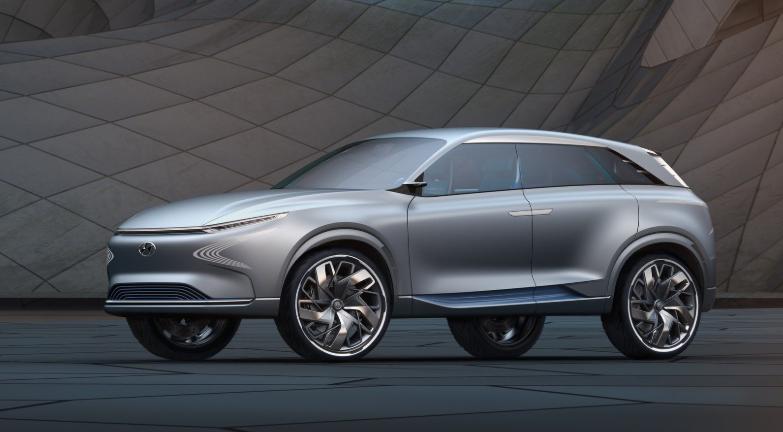 2020 Hyundai FE Fuel Cell